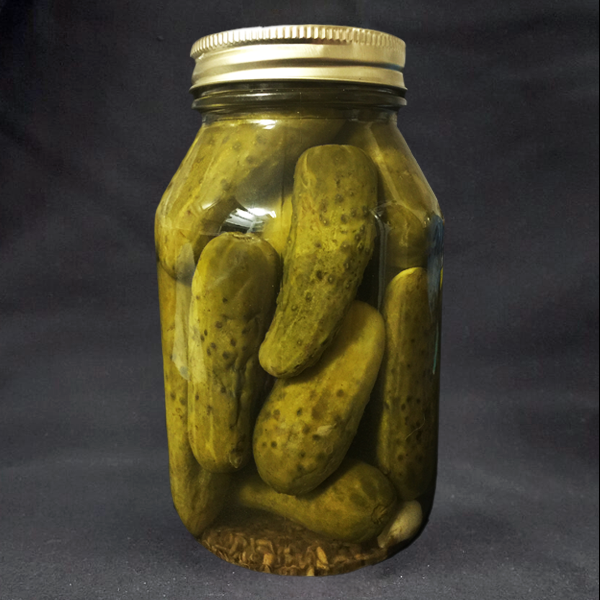 Old Fashioned Dill And Garlic Pickles